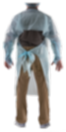 BLUE_CURTAIN_GOWN_BK.png