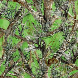 LowRes_MC2_Green