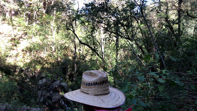 Cascada en Señorío Agua Zarca