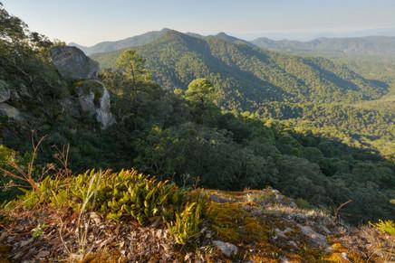 Vista desde el divisadero de Señorío Monte Los Frailes