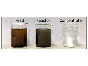 Clarity of VFA concentrate obtained compared with feed and reactor liquid