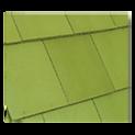 ชิงเกิ้ล เขียวไพน์.png