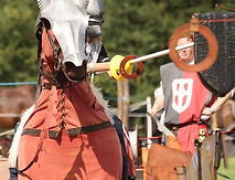 Have a go Jousting