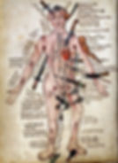 a-compendium-of-all-the-injuries-that-a-