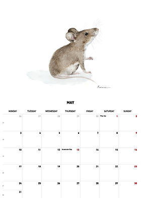 2021 calendar_version_26.jpg