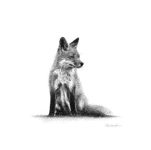 Watching |  original ink illustration