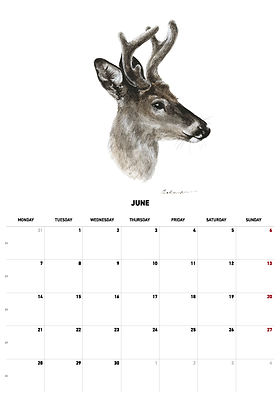 2021 calendar_version_27.jpg
