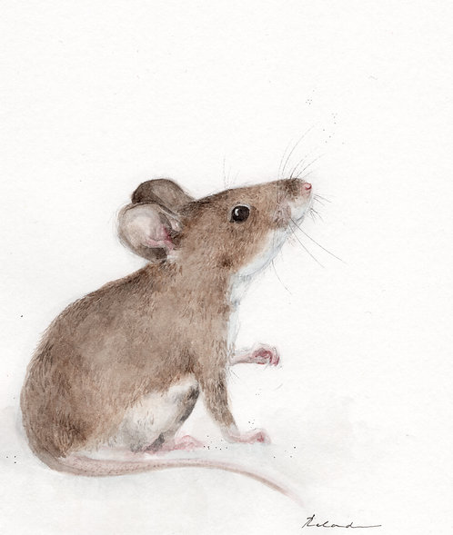 Little rat  | original watercolor