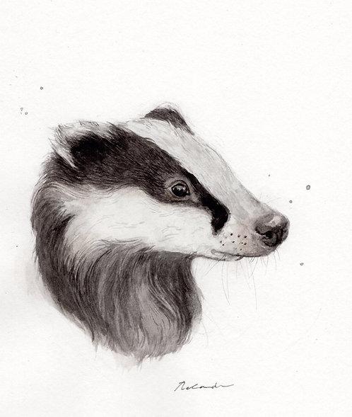 Badger • original watercolor