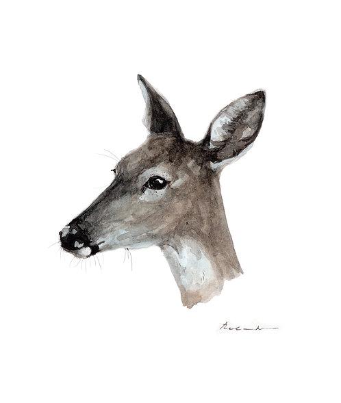 Deer 2  - giclee print