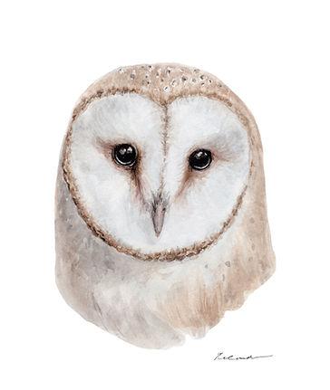 Watercolour_owl_2.jpg