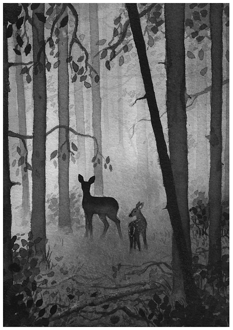 Deer and fawn - PRINT