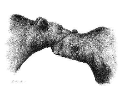 Cuddling |  original ink illustration