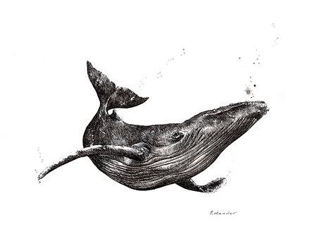 Underwater dreamer - Print