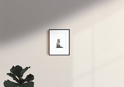 Sitting and observing - PRINT
