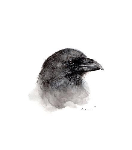 Raven | original watercolor