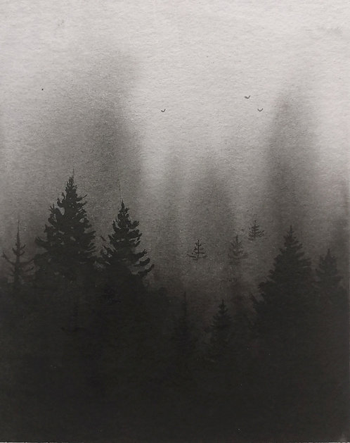 Black misty forest