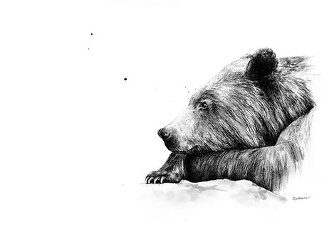 """What if..."" (bear) - Print"