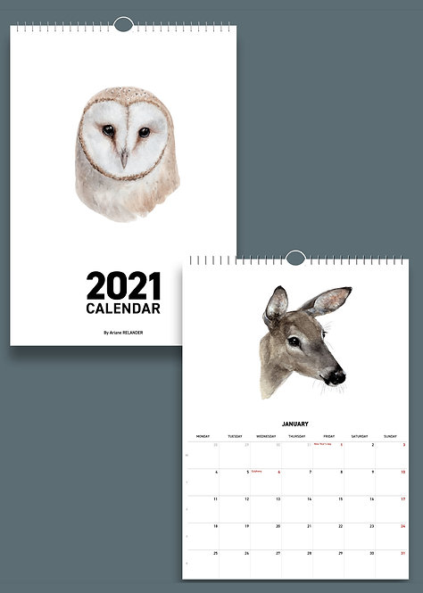 PRE-ORDER: 2021 calendar / IRIS