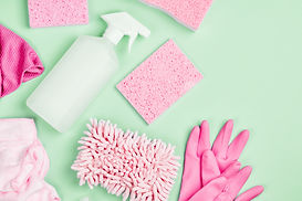 Detergents and cleaning accessories  in