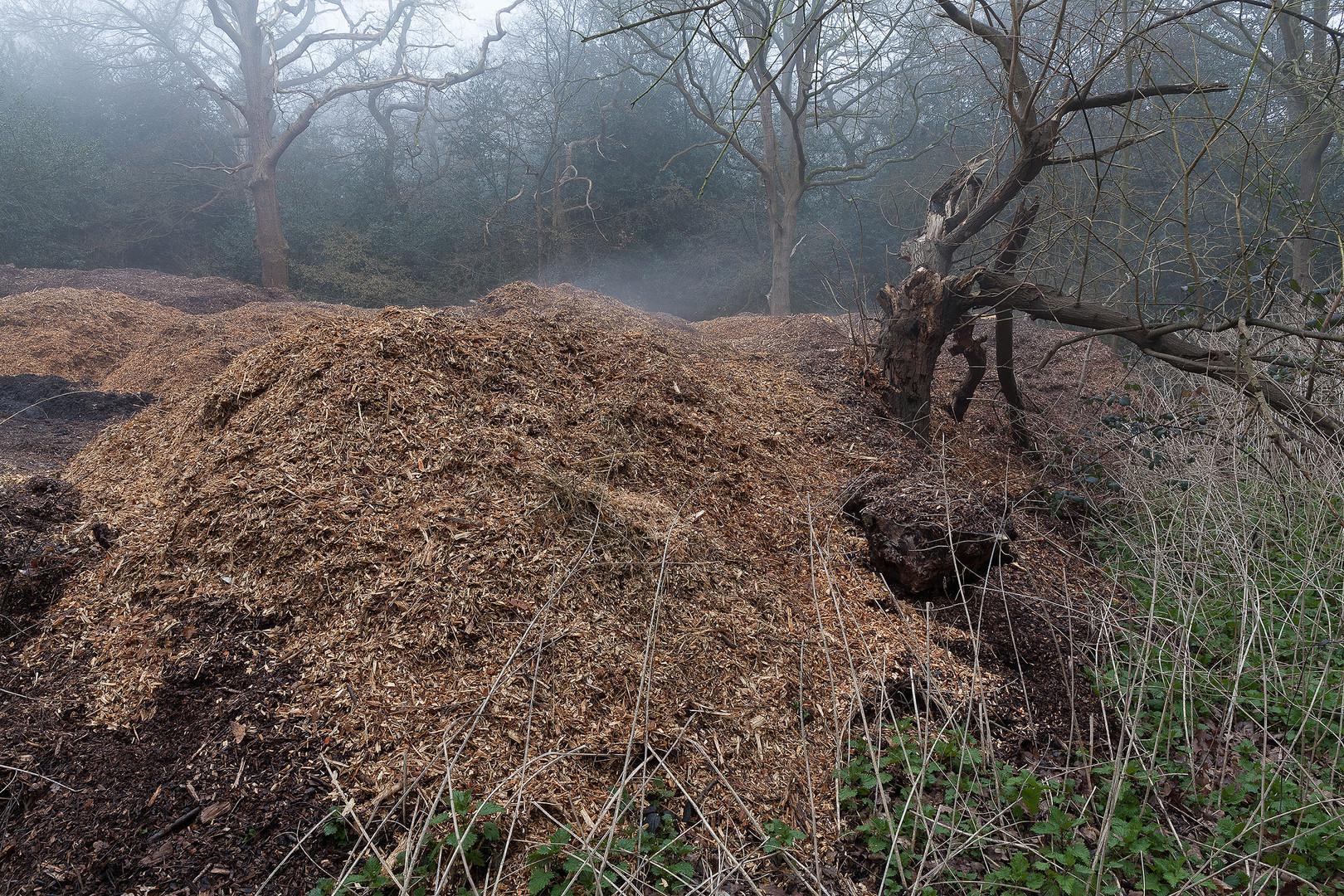Steaming hot sawdust, Wimbledon Common, London, England, UK