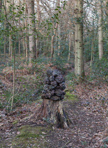 Forest art, stones arranged on top of tree trunk, Wimbledon Common, London, England, UK