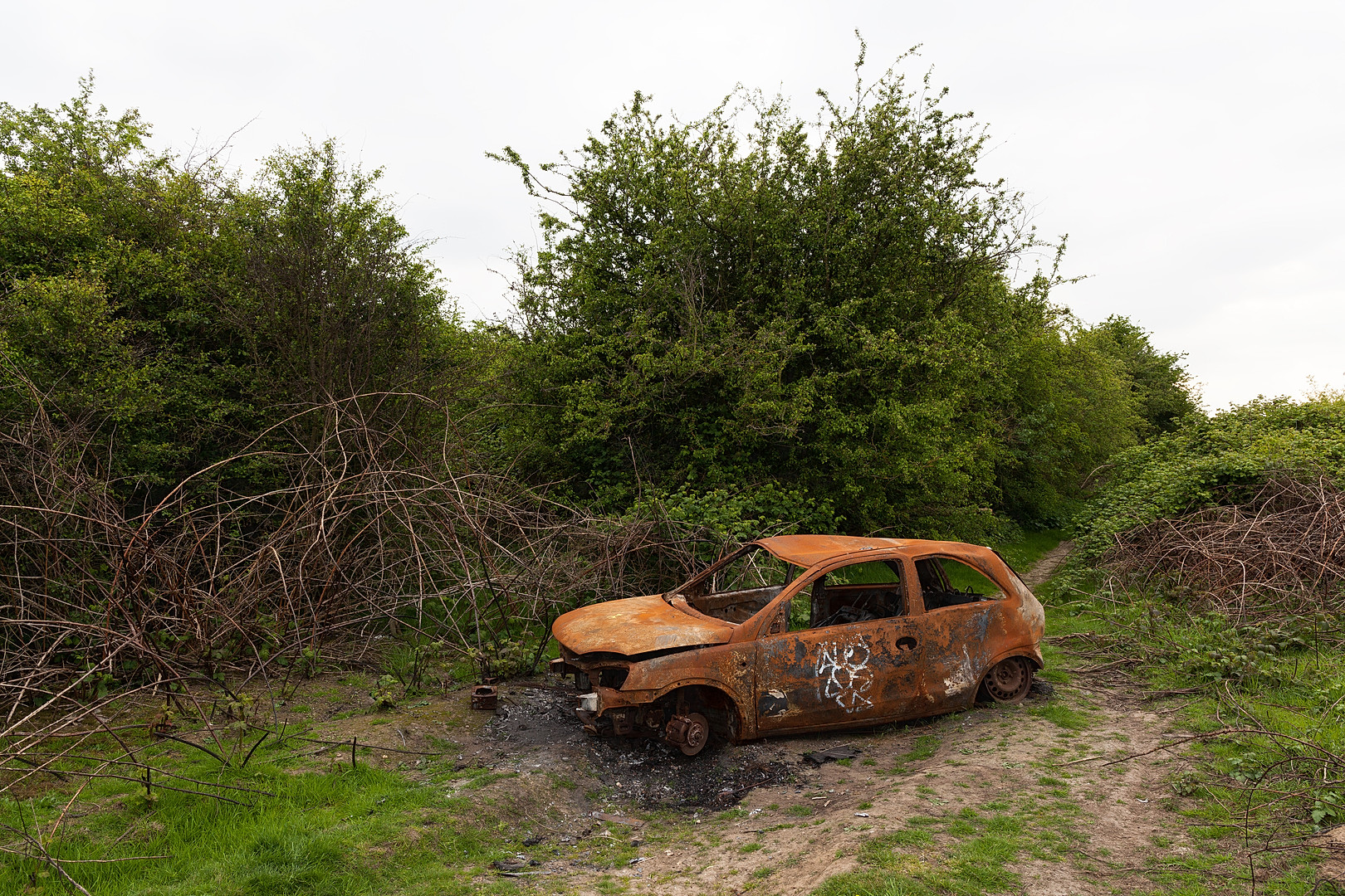 Rusted and burnt out car in wasteland