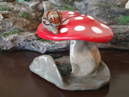 Mushroom with Snail