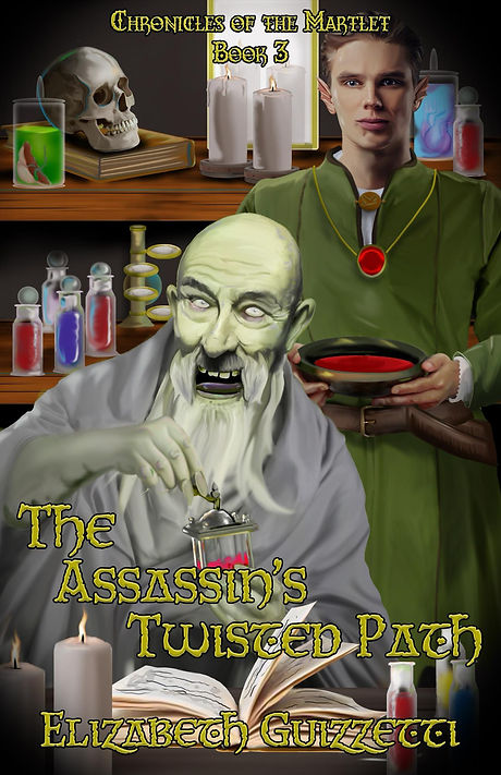 The_Assassins_Twist_Cover_for_Kindle.jpg