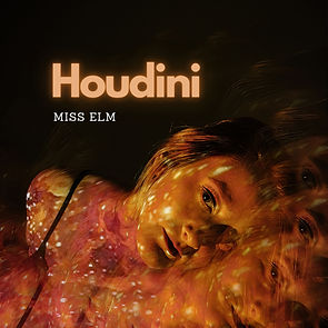 Houdini_albumart.jpg