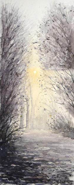""" Woodland path """