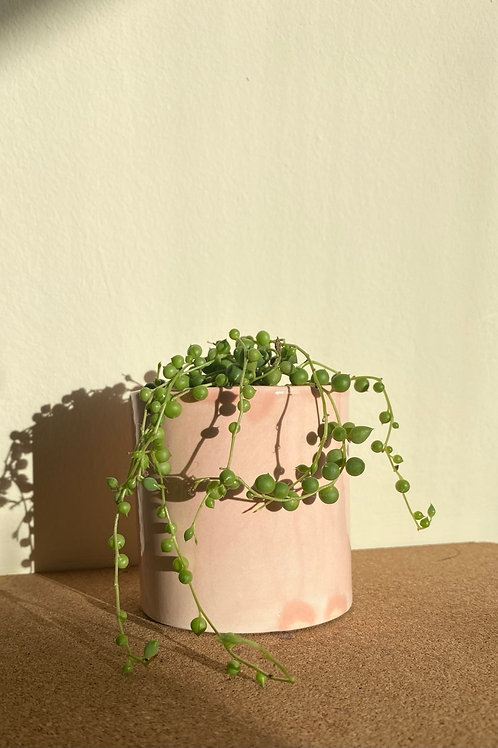 Pink Small Planter