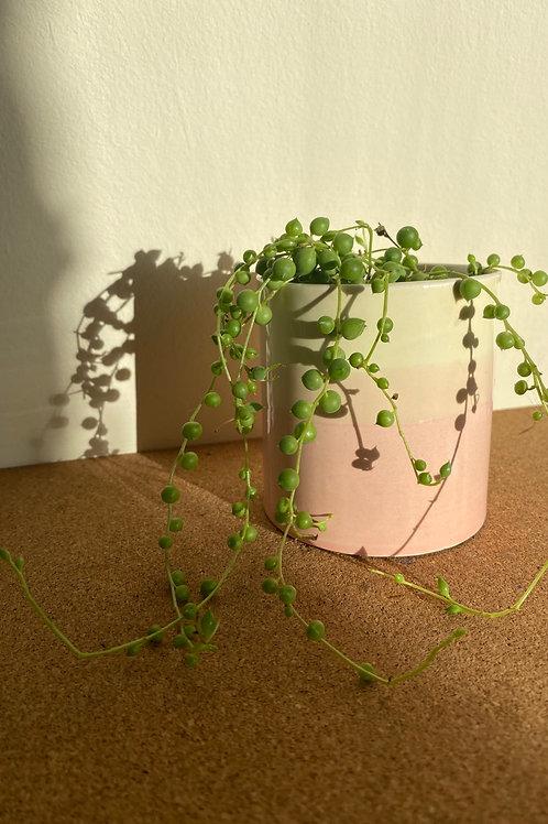 Small Planter