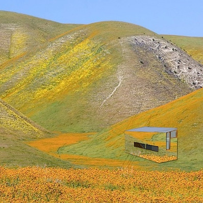 the Invisible tiny TeaHOUSE