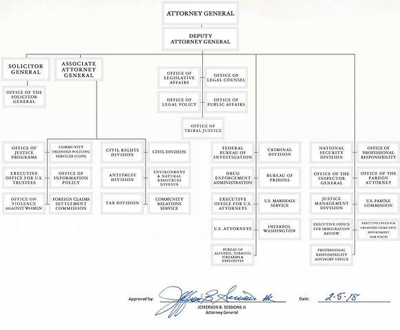 org-chart-2018.jpg