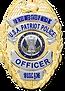 Patriot Police Commander badge.png