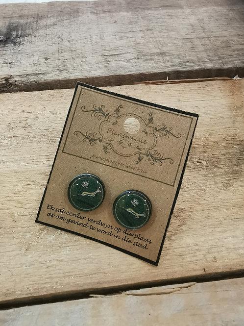 Earrings - Springbok