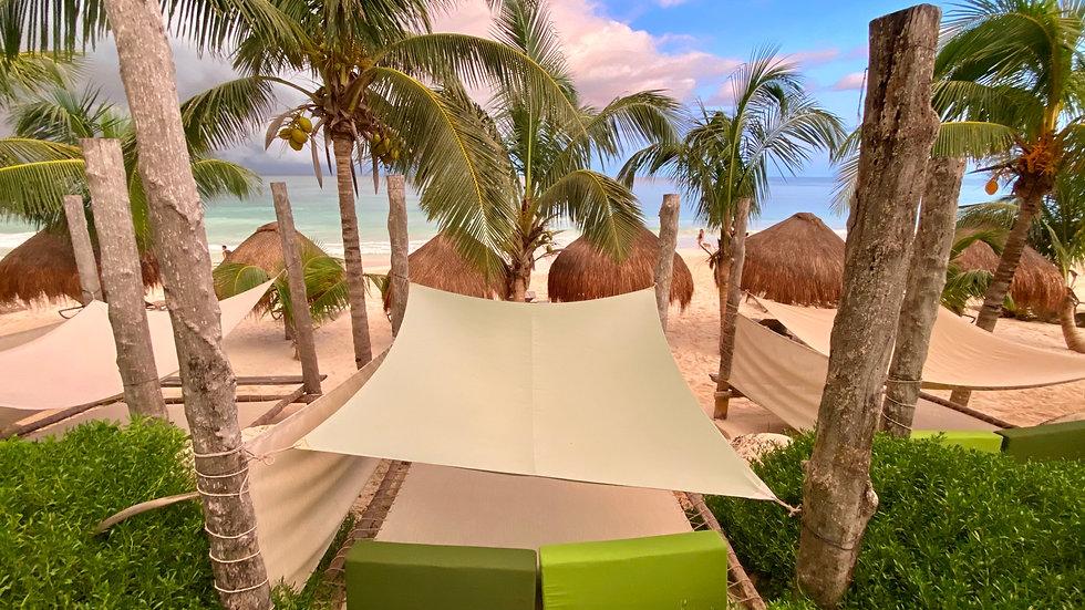 Beach beds.JPG