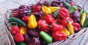 Looking for chilli food ideas and images?
