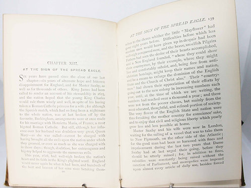 Antique novel Saxby Illustrated book picture book