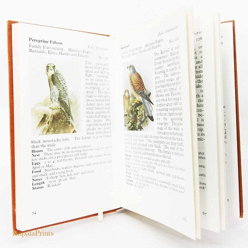 Birdwatching Guide Book Vintage Nature Hardback Ornothology Bird book gift styli