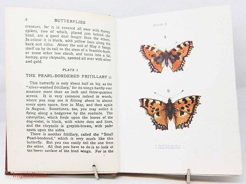 Butterflies & Moths - Colour plates Vintage Hardback 1920s Natural History gift