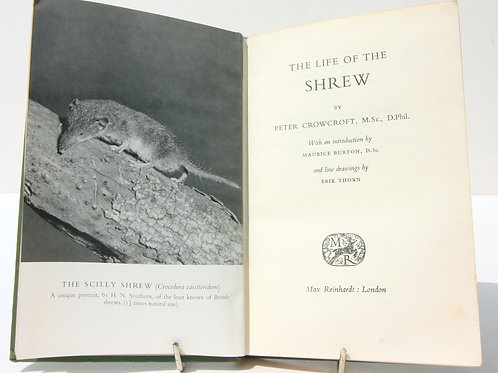 Life of the Shrew