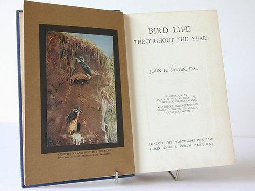 Birds Throughout The Year Handbook