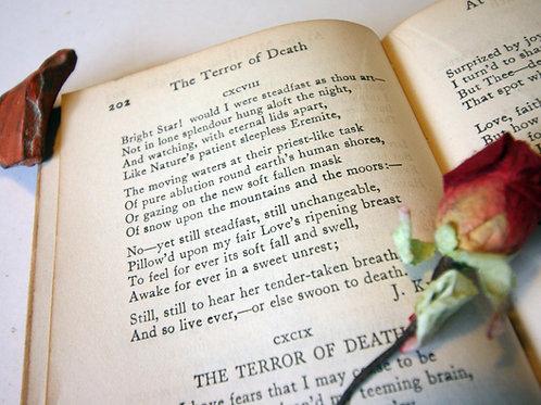 Golden Treasury antique 1919 poetry book