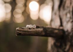 Engaged-195