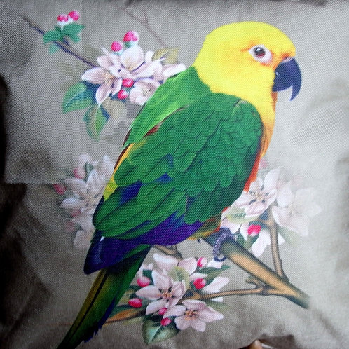 Green Parrot Cushion