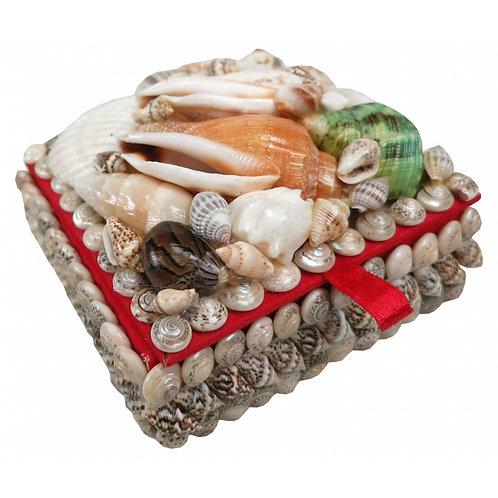 Shell Jewellery Box
