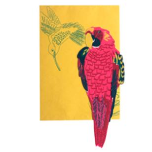 Parrot Greetings Card