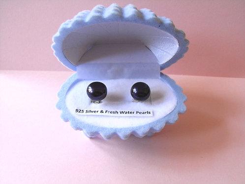 Dark Blue Freshwater Pearls Stud Earrings